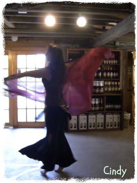 Cindy Bellydancing with a veil for the guests