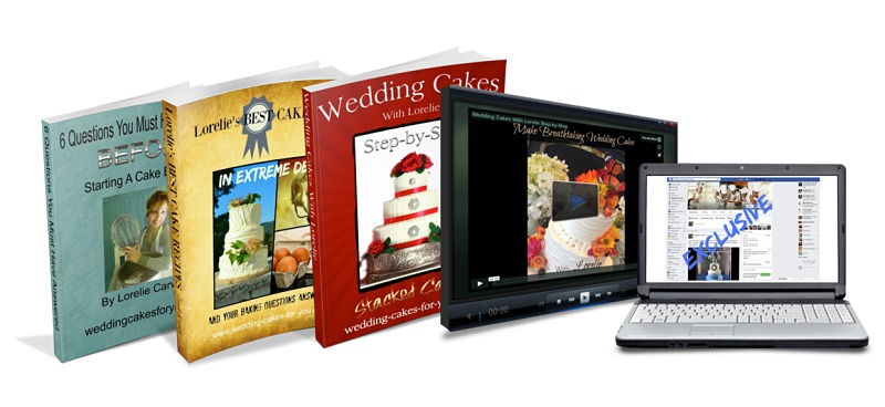Lorelie's e-Books & Video Package