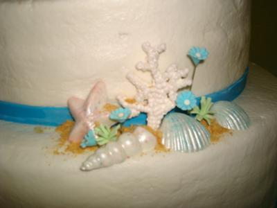 White Chocolate Seashells