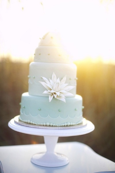 Sea shell wedding cakes are a perfect fit for a beach themed cake image from intimate weddings junglespirit Choice Image