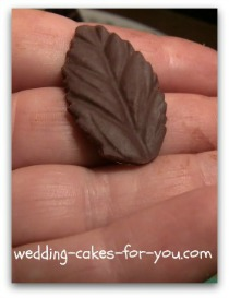 chocolate leave