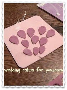 Fondant petals cut and ready to use