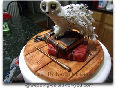 Harry Potter Cake For Icing Smiles