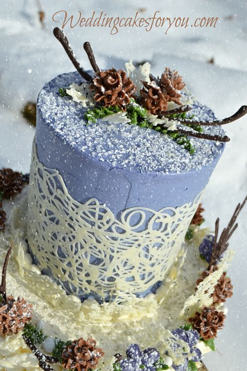 Winter wedding cake with white chocolate accents