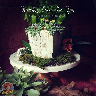 concrete buttercream and succulents cake