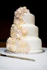 sea shell cake design